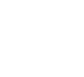 logo nitrollanta